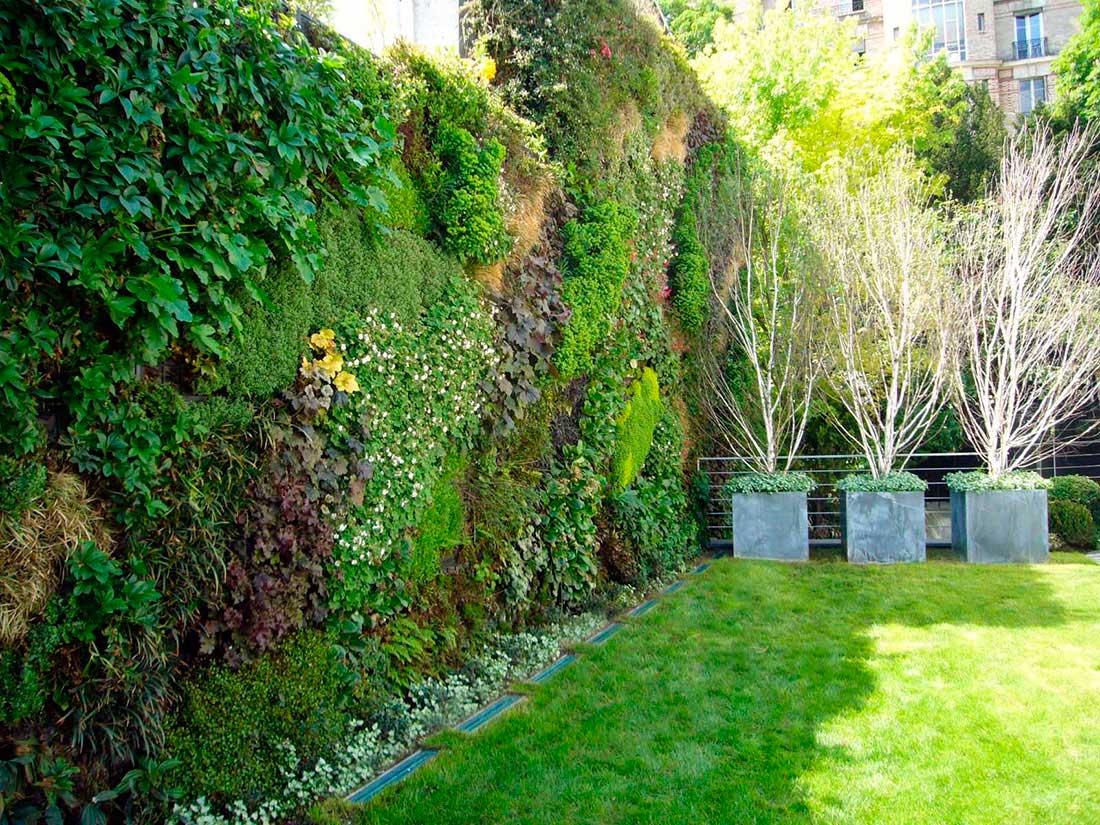 Fachadas verdes activas canevaflor productos - Muros verdes verticales ...