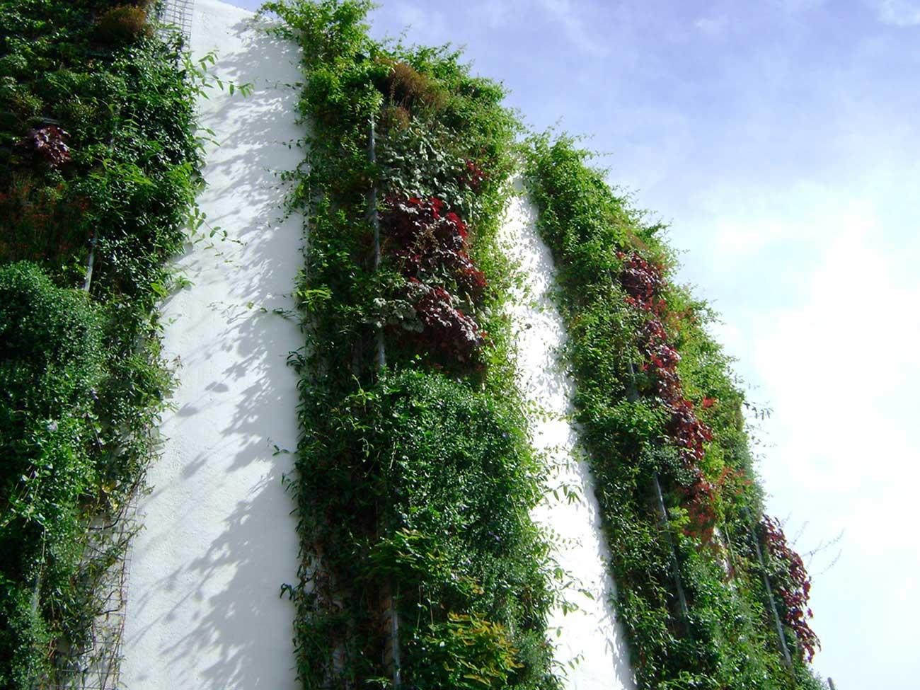 muro-verde-descontaminante