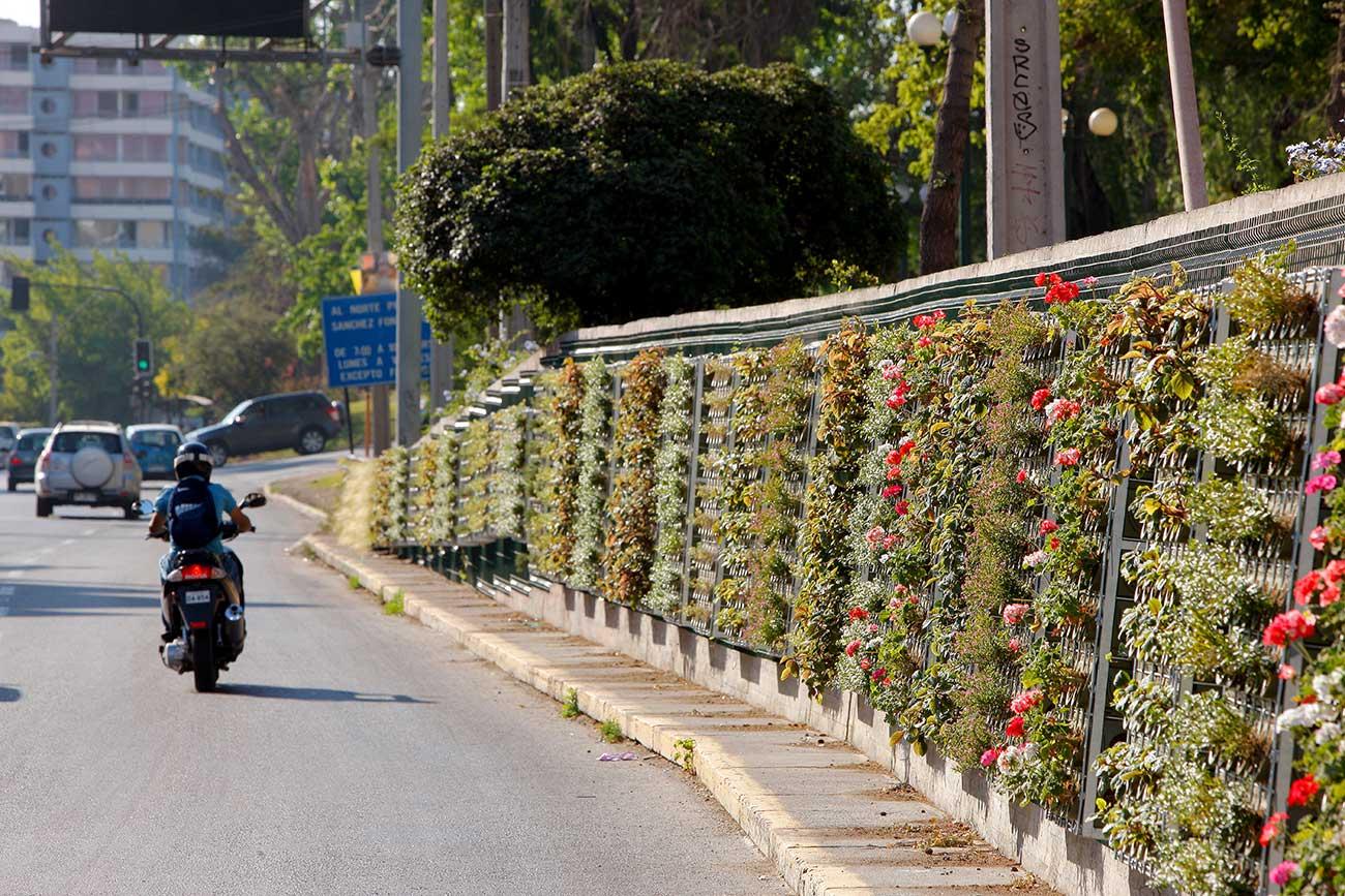 Jardines verticales en el mundo canevaflor proyectos for Jardin verde
